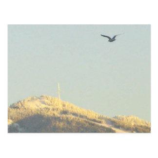 Waldhuhn-Berg, BC Postkarte