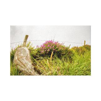 """Wandkunst """"der irischen Heide"""" Leinwanddruck"""