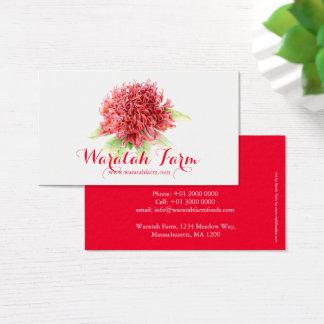 Waratah rote Blumenkunstbauernhof-Geschäftskarte Visitenkarten