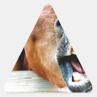 Was ist so lustig? Dreiecks-Aufkleber