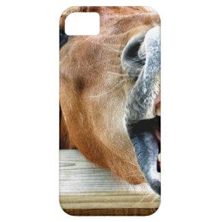 Was ist so lustig? schutzhülle fürs iPhone 5