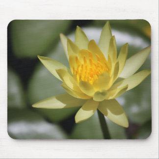 Wasser-Lilien-Mausunterlagen Mousepads