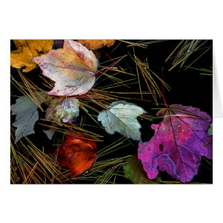 Wasser-Tapisserie-Herbst-Blätter auf Wasser Karte
