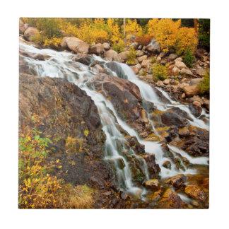 Wasserfall in großartigem Teton Nationalpark Fliese