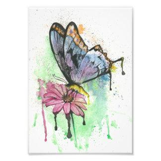 Wasserfarbeschmetterling auf Gänseblümchen-Blume Kunstfoto