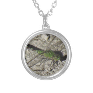 Weibliche Podhawk Libelle Pendent Versilberte Kette