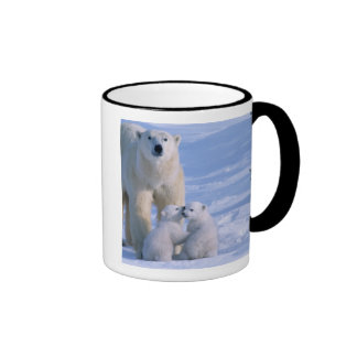 Weiblicher polarer Bär stehend mit 2 CUB an ihr Teetasse