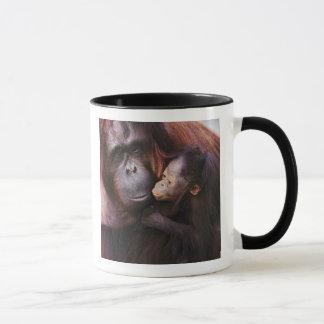 Weiblicher Sumatran Orang-Utan mit Baby, Pongo Tasse