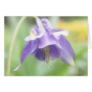 Weiche blaue Blumenblätter - Aquilegia Karte
