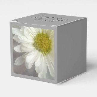 Weiches weißes Gänseblümchen auf grauer Hochzeit Geschenkschachtel