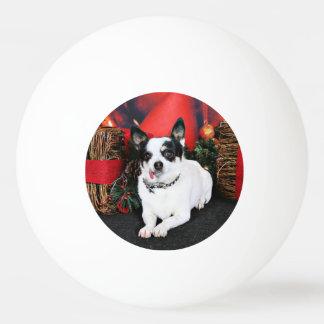 Weihnachten - Chihuahua X - Stella Tischtennis Ball
