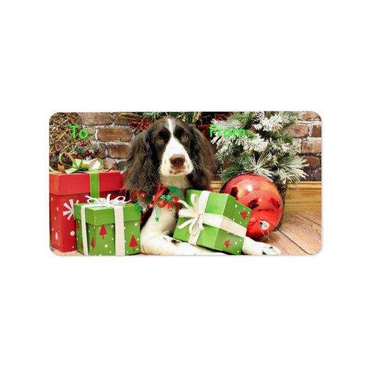 Weihnachten - englischer SpringerSpaniel - Kinzie Adressaufkleber