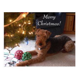 Weihnachten mit Madeleine-Postkarte Postkarten