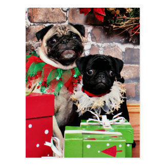 Witzige Weihnachtskarten auf Zazzle Österreich