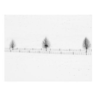 Weihnachtsbäume: frohe Feiertage Postkarte