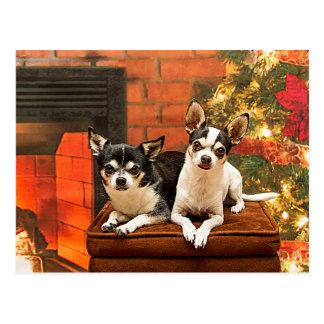 WeihnachtsChihuahua Postkarte