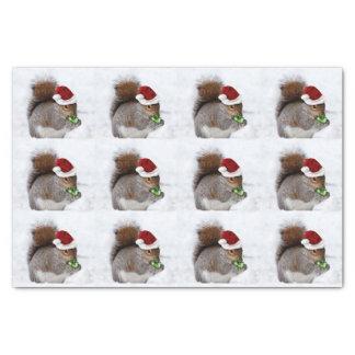 Weihnachtseichhörnchen-Seidenpapier Seidenpapier