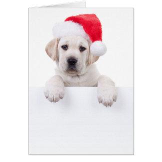 Weihnachtsfahnen-Hund Grußkarte
