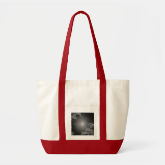 Weihnachtspoinsettia schwarz und Grau IV Taschen