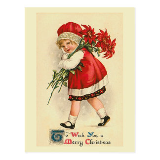 """Weihnachtspoinsettias "" Postkarte"