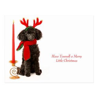 WeihnachtsZwergpudel-Hund Postkarte