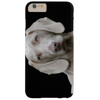 Weimaraner Welpenaugen Barely There iPhone 6 Plus Hülle