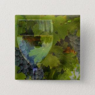 Wein und Trauben-Knopf Quadratischer Button 5,1 Cm
