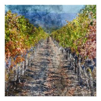 Weinberg im Herbst in Napa Valley Kalifornien Perfektes Poster