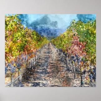Weinberg im Herbst in Napa Valley Kalifornien Poster