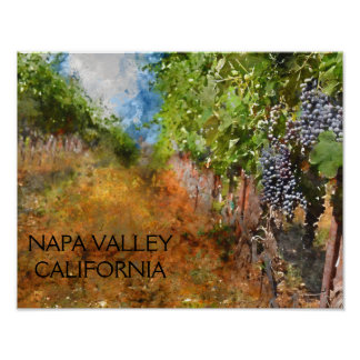 Weinberg in Napa Valley Kalifornien Poster