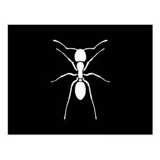 Weiße Ameisen-Silhouette-Gewohnheit Postkarte