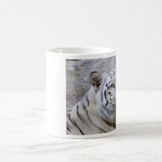 Weiße bengalische Tiger-Tasse Tasse