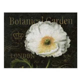 Weiße Blüten und Blätter Postkarten