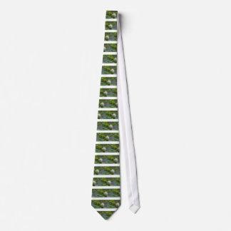 Weiße Buttonbush Wildblume Krawatte