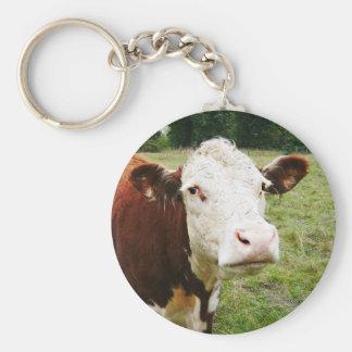 Weiße gegenübergestellte Rindfleisch-Kuh Schlüsselanhänger