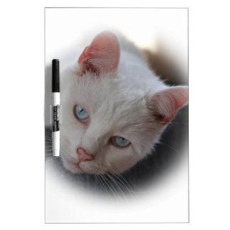 Weiße Katze Memo Boards