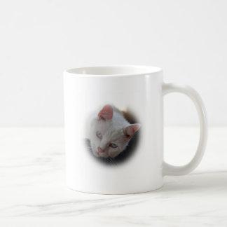Weiße Katze Tasse