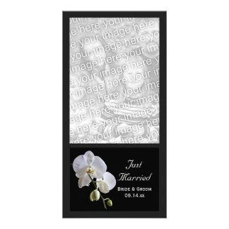 Weiße Orchidee auf Schwarz-gerade verheirateter Photokartenvorlage