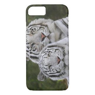 Weiße Phase, bengalischer Tiger, der Tigris iPhone 8/7 Hülle