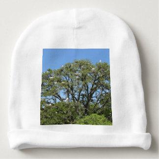 Weiße Reiher in einem Baum Babymütze