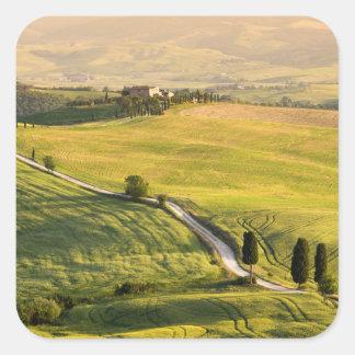 Weiße Straße im Toskana-Landschaftsaufkleber Quadratischer Aufkleber