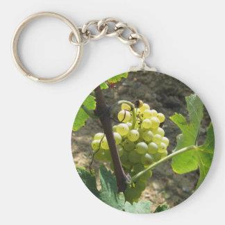 Weiße Trauben in einem Weinberg Schlüsselanhänger