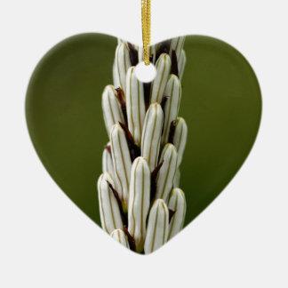 Weißer Asphodel (Asphodelus albus) Keramik Ornament