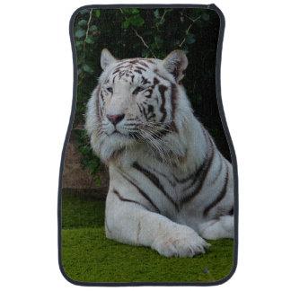 Weißer bengalischer Tiger Automatte