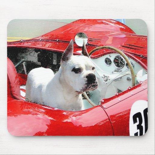 Weißer Boxer-Hund in Maserati mousepad