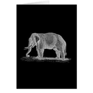 Weißer Elefant Vintage 1800s Illustration Karte