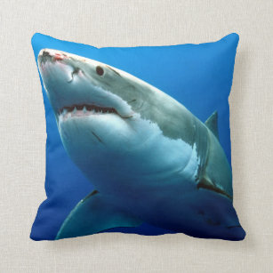 Perfekt Weißer Hai Kissen