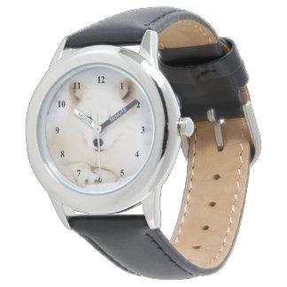 Weißer niedlicher arktischer polarer Fuchs im Armbanduhr