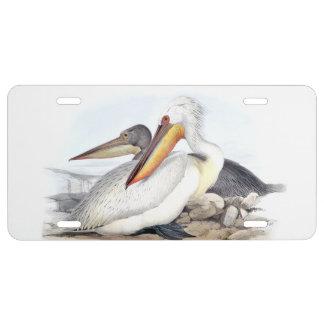 Weißer Pelikan-Vogel-Strand-Tier-Kfz-Kennzeichen US Nummernschild