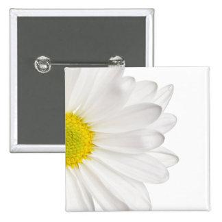 Weißes Gänseblümchen-Blumen-Hintergrund Quadratischer Button 5,1 Cm